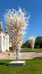 Opal and Amber towers (Russtafa) Tags: dale dalechihuly kew sculpture sculptor glass nature
