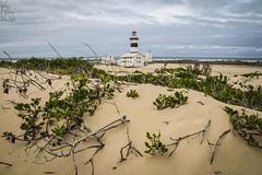Cape Recife Lighthouse (katka.havlikova) Tags: sand dune recife cape africa southafrica port elizabeth lighthouse light lightkeeper sea seaside building architecture travel cestování maják