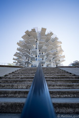L'arbre Blanc (Mathieu gsst) Tags: architecture sky tree symmetry stairs twer soufujimoto montpellier larbreblannc olympusfrance olympus714pro graphic omd