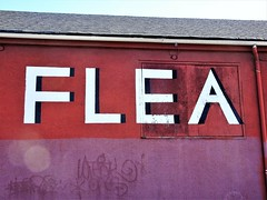 Flea (knightbefore_99) Tags: vancouver urban flea market cool bc sale cheap awesome ridiculous terminal weekend red puce barn used antique