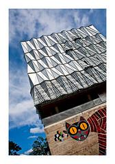 un chat... nantais ! (Marie Hacene) Tags: nantes immeuble architecture street ville art de rue streetart chat