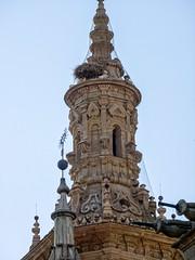 torre campanario exterior Concatedral de Santa Maria de la Redonda Logroño La Rioja 04 (Rafael Gomez - http://micamara.es) Tags: concatedral esp españa larioja torre campanario exterior de santa maria la redonda logroño rioja
