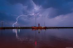 Harlingen Lightning !!!!
