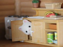 Cozy in the Cabinet (Tee-Ah-Nah) Tags: miniature cute detail critters calico figurine animals kitten kitty baby cat cabinet kitchen hiding seek girl