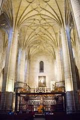 coro reja y boveda interior Concatedral de Santa Maria de la Redonda Logroño La Rioja (Rafael Gomez - http://micamara.es) Tags: españa logroño esp larioja concatedral santa de reja la y maria interior rioja redonda coro boveda