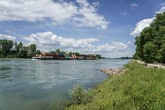 Verkehrsweg (KaAuenwasser) Tags: rhein fluss wasser landschaft frachter schiff verkehrsweg strase ufer himmel wolken blau grün fracht güter gros