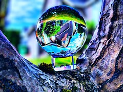 Day 87: House in a Lensball (Thunderstormnightmare) Tags: blue trees red sky brown sun white house green home nature beautiful grass june clouds outside washington spring nice day outdoor flag sunny national bark tuesday crystalball lakestevens lensball challenge weather unlimitedphotos