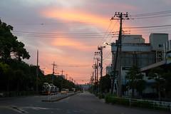 city of sunset glow (kasa51) Tags: sunsetglow cityscape pole wire cable tokyo japan 夕映えの街 sunset dusk twilight