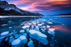 Abraham Lake (dwfphoto) Tags: abrahamlake banffnationalpark banff canadianrockies canada methanebubbles