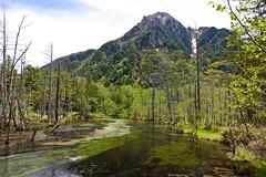 Wet Land (tez-guitar) Tags: wetland water stream reflection kamikochi highland mountain peak nagano shinshu leica leicacl varioelmar1856