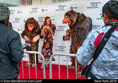 Red carpet animals (eraneran70) Tags: nyc street eran bendheim canon eos1 mark3 tamron 1530mm film glam monsters animals fur model beauty tribeca red carpet celeb