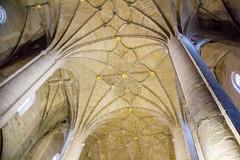 boveda nave central interior Concatedral de Santa Maria de la Redonda Logroño La Rioja 03 (Rafael Gomez - http://micamara.es) Tags: españa logroño esp larioja concatedral santa de la maria interior central nave rioja redonda boveda