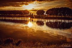 Golden Sunset (Stathis Iordanidis) Tags: sunset sundown golden river riverside maas steyl netherlands nature amazing landscape travel
