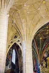 boveda nave central interior Concatedral de Santa Maria de la Redonda Logroño La Rioja 01 (Rafael Gomez - http://micamara.es) Tags: españa logroño esp larioja concatedral santa de la maria interior central nave rioja redonda boveda