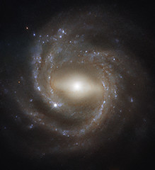 Barred Spiral Galaxy NGC 7773 (sjrankin) Tags: ngc7773 edited nasa 5june2019 hst hubblespacetelescope esa europeanspaceagency galaxy spiralgalaxy barredspiralgalaxy stars nebula