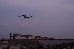 the time of guidance lights (kasa51) Tags: airplane airport guidancelight dusk twilight tokyo japan 旅客機 誘導灯 空港 sunset ana