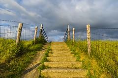 Waarde (Omroep Zeeland) Tags: zeedijk waarde westerschelde trapje fietsgeul wolkenlucht zeeland nederland