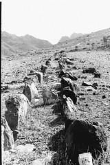 El camino del agua: un paisaje casi de Marte (Konakilo) Tags: yashica ministerd yashinon fomapan kodak d76 acequia hus