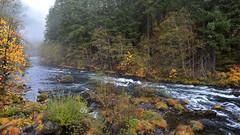 Fall Colors - Misty Morning (Lone Rock) Tags: idleyldpark oregon unitedstates usa copelandcreek river northumpquariver fallcolors fog mist