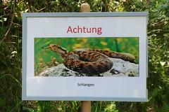 Beware of snakes (Kecko) Tags: 2019 kecko switzerland swiss schweiz suisse svizzera innerschweiz zentralschweiz uri gotthard armee militär army military sign schild tafel schlangen swissphoto