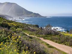 Big Sur (Teelicht) Tags: bigsur california californiastateroute1 highway1 kalifornien küste nordamerika northamerica ozean pacificocean pazifik usa unitedstatesofamerica vereinigtestaaten coast ocean