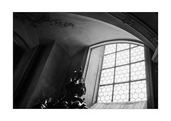 Lines with the Chamber (Thomas Listl) Tags: thomaslistl blackandwhite biancoenegro noiretblanc monochrome 35mm 35mm14 church churchinterior window mood lines ceiling käppele würzburg grey