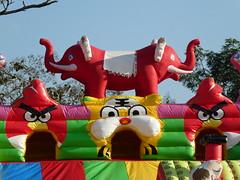 Opgeblazen (Merodema) Tags: lucht air animals troepje together gezellig cosy hole gat spuwen spelen
