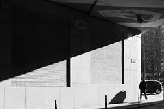 Light Diagonal (Ren-s) Tags: blackandwhite black blackwhite white bw bruxelles brussels belgium belgique town towncenter downtown street streetphotography noir blanc noiretblanc noirblanc nb new 2019 rue photoderue photographiederue people pedestrians piétons man homme contraste contrast shadow ombre bridge pont car voiture trottoire sidewalk europe light sun sunlight soleil walking marche diagonal diagonale straightlines olympus em10 lumix g