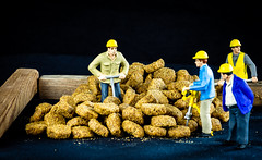 6M7A6082 (hallbæck) Tags: hundefoder dogfood industrialproduction smallfactory arbejdendemænd menatwork arbejdere workers busy figures mh hørsholm denmark canoneos5dmarkiii ef85mmf12liiusm