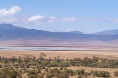 Ngorongoro, Tanzania (Amdelsur) Tags: continentsetpays tanzanie caldeiradungorongoro afrique africa ngorongorocaldera tz tza tanzania régiondarusha