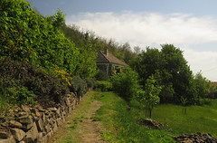 Cottage (aniko e) Tags: cottage house hill wine vineyard winery raposka kisapáti szentgyörgyhegy hiking hungary balatonfelvidékinemzetipark balatonuplandsnationalpark balaton bfnp spring