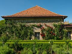 Parc du château de Vullierens (Micaël Chevalley (Atelier Digital)) Tags: couleursphotographie micaëlchevalley fujifilmgfx50r fujifilmgf3234 couleursphotographiech vullierens cantondevaud suisse