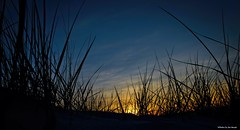 Hiding from the sun.... (Joe Hengel) Tags: hidingfromthesun lowerslowerdelaware lsd lewes lewesde delaware de sussexcounty silhouette silhouettes beach evening eveninglight eveningskies watchingthesunset dunes dune dunegrass sanddunes sky skies clouds sunset bluehour capehenlopenstatepark capehenlopen statepark park