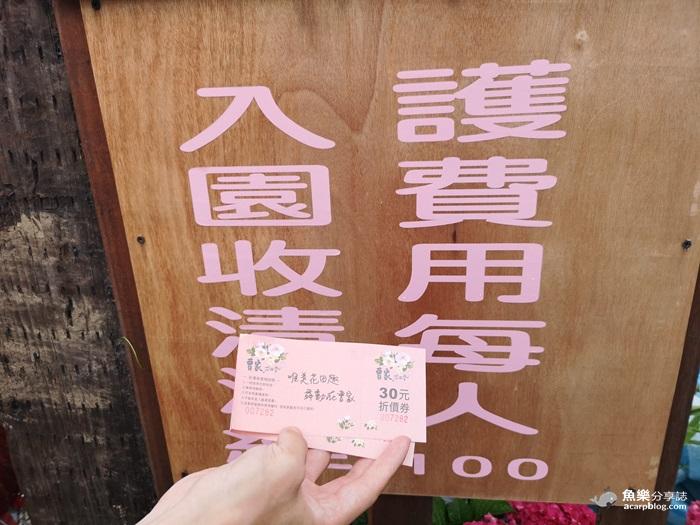 【台北景點】2019陽明山竹子湖繡球花季│賞花推薦│交通規劃 @魚樂分享誌