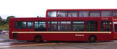 IMGP0048 (Steve Guess) Tags: morecambe lancashire england gb uk bus ribble centenary 100 arriva wright heritage retro livery