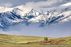 Wallowa Mountains (Gary Grossman) Tags: wallowa mountains prairie zumwalt oregon northwest spring landscape nature ranch range garygrossman garygrossmanphotography pacificnorthwest zumwaltprairie wallowamountains landscapephotography