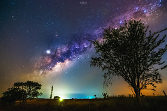 [Noites Cerradenses] (Gentilly Costa) Tags: astrophotography nightscape stars deep godsmade cerrado milkway minasgerais brasil mg