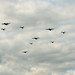 Special Operations Flypast