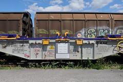 Buchs SG - Container Car Sgmmns 40' (Kecko) Tags: 2019 kecko switzerland swiss schweiz suisse svizzera ostschweiz rheintal buchs sg railway railroad eisenbahn bahn sbb containertragwagen vtg aae güterzug cargo train zug bahnhof station swissphoto geotagged geo:lat=47167940 geo:lon=9480230