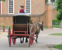 18th Century Transportation (acadia_breeze4130) Tags: williamsburg virginia colonial 18thcentury historic history carriage horsedrawn governorspalace transportation colonialwilliamsburg sx60hs karencarlson