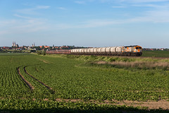 Langenstein (Nils Wieske) Tags: sachsenanhalt harz harzvorland hvle baureihe 250 tiger güterzug halberstadt bahn eisenbahn train railway railroad