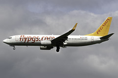Pegasus Airlines 737-800 TC-CPP at London Stansted STN/EGSS (dan89876) Tags: pegasus airlines boeing 737 737800 b738 737804 tccpp london stansted airport landing 22 stn egss