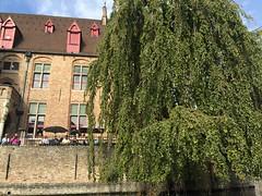 Boat Trip Brugge (ChihPing) Tags: brugge bruges 布魯日 比利時 belgium boat trip travel 自助旅行 iphone 遊船