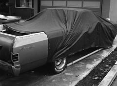 San Jose, California (bior) Tags: pentax645nii 6x45cm pentax645 ilfordfilm hp5plus hp5 ilfordhp5plus 75mm sanjose california fence suburbs residential house driveway car cover chevy chevrolet elcamino chevyelcamino