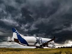 Airbus Beluga XL (BadGunman) Tags: storm sky taxiway runway airport france southoffrance fly aviation belugaxl beluga airbus
