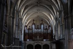 Orgue de la Cathédrale Saint-André - Bordeaux (Man0uk) Tags: cathedrale bordeaux aquitaine church eglise religion orgue pipeorgan sudouest france gironde