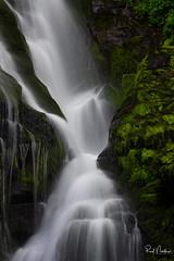 Mossy Flow (Reid Northrup) Tags: rrs nature eastatoefalls flowingwater forest landscape longexposure moss nikon northcarolina reidnorthrup river rocks scenic stream trees water waterfall