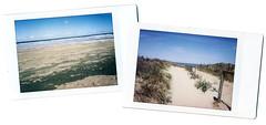 Noordwijk (Ulla M.) Tags: instantfilm instant instaxmini instax sofortbild fuji nordsee northsea noordwijk netherlands niederlande meer strand beach ocean analog analogphotography analogue umphotoart