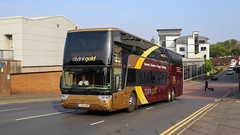 50312 YJ64AUP Stagecoach Western (busmanscotland) Tags: stagecoach 50312 yj64aup gold scottish western van megabus citylink hool aup megabuscom megabusgoldcom tdx29 yj64 astrimega
