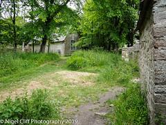 Tyneham 31.05. 201900007 (Nigel Cliff) Tags: corfecastle dorset kimmeridgebay tynehamvillage